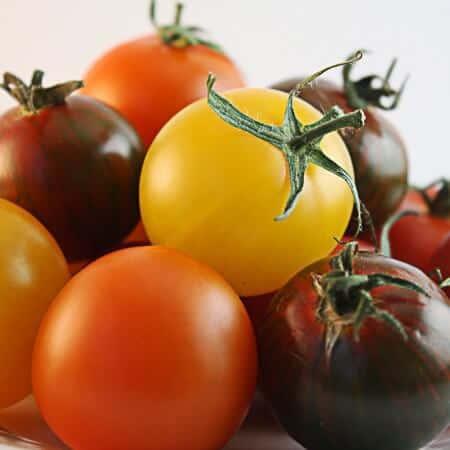 stuffed baby heirloom tomatoes