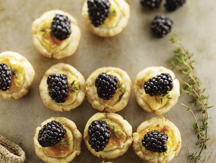 Bite-Sized Cheese Tarts with Blackberries - these are so elegant and tasty! Perfect for an appetizer, brunch or shower! | thewickednoodle.com