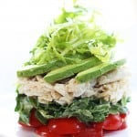 salad using food ringsThis Cobb Salad Recipe is not only incredibly delicious and easy to make, it's gorgeous to look at. Learn how to make a cobb salad and plate it!