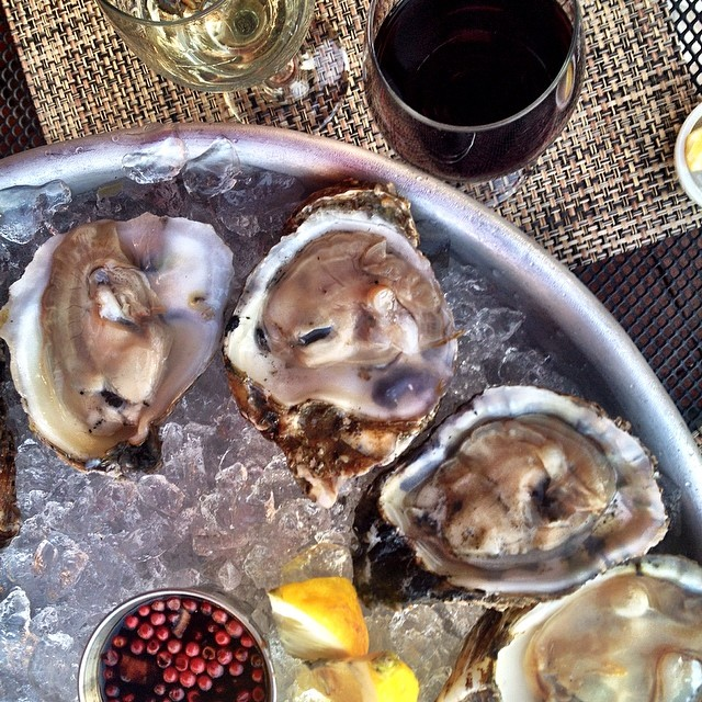 A quiet last night in CT means dinner outside with oysters and good wine. Really couldn't be happier!