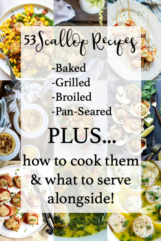 53 Scallop Recipes - Baked, Grilled, Broiled and Pan-Seared