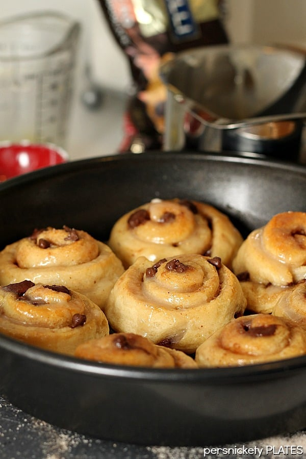 Chocolate Chip Cinnamon Rolls - plus a collection of both sweet and savory recipes using Crescent Roll dough!