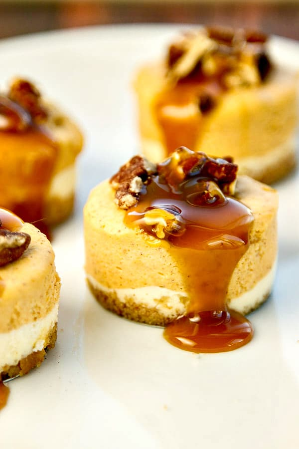 Mini Pumpkin Cheesecakes with Bourbon Pecan Caramel Sauce - so simple yet so pretty and delicious! Great for serving a crowd!