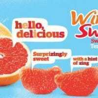 3-ingredient Healthy Grapefruit Snack