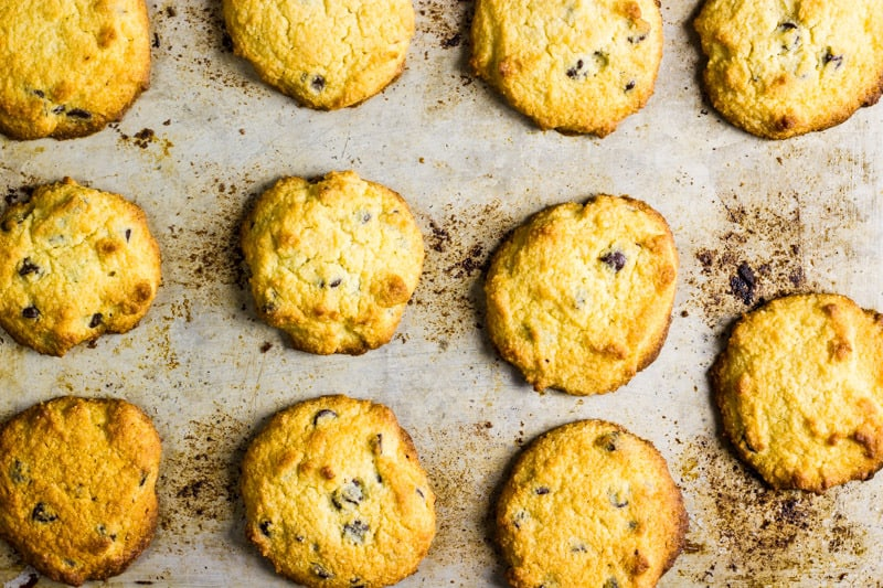 Keto chocolate chip cookies on a sheet pan just out of the oven   Low carb chocolate chip cookies