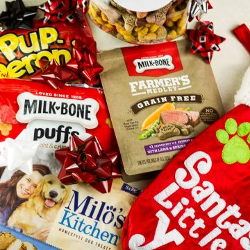 Holiday Dog Treats for your Furry Friends!